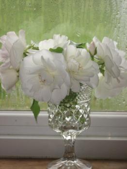 01103-flowersrosespeonies010