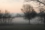 5e554-fog037