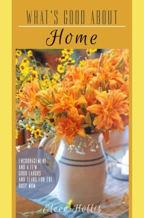 My book about home and the many good things about it.